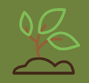 Umwelt - Corporate Social Responsibility bei Dampsoft